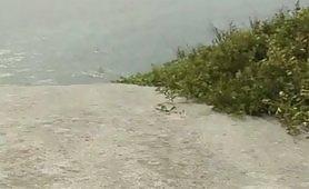Gloria Gucci sesso in spiaggia